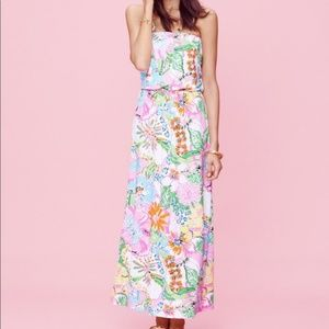 Lilly Pulitzer Nosey Posie Maxi Dress